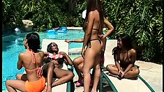 Insatiable lesbians have an out-of-control foursome poolside
