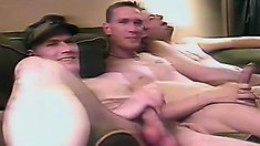 Irresistible gay hunks love having an intense and wild fuck fest