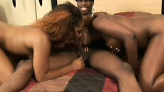 A lucky dude has two dirty black babes licking his thick meat