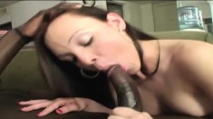 Young brunette's porcelain ass gets red as she rides this black bone