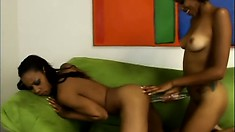 On the couch, the ebony beauties Krystal and Misty take each other's twats to pleasure