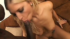 Buxom blonde has a massive black dick filling every inch of her pussy